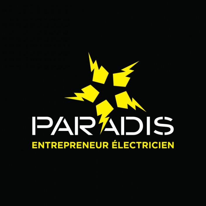 Paradis entrepreneur électricien