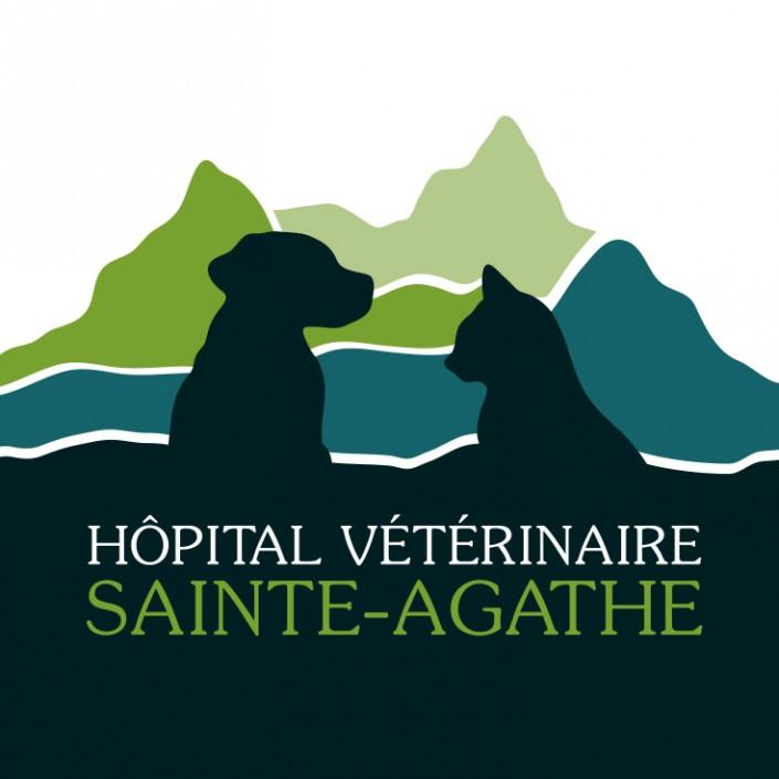 Hôpital vétérinaire Sainte-Agathe